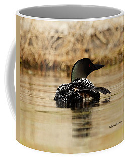 The Fish Went That Way Coffee Mug by Steven Clipperton