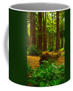 The Forest Of Golden Gate Park Coffee Mug