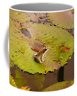 Coffee Mug featuring the photograph The Frog by Evelyn Tambour