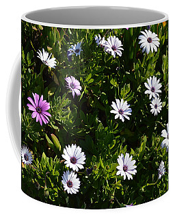 Coffee Mug featuring the photograph The Garden by Laurie Lundquist