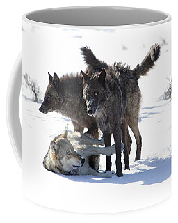 The Girls Coffee Mug