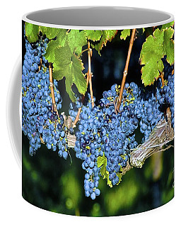 The Grapes Coffee Mug