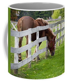 Coffee Mug featuring the photograph The Grass Is Always Greener by Jeff Ross