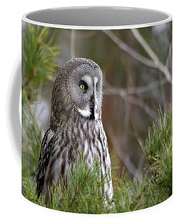 The Great Grey Owl Coffee Mug