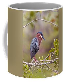 The Green Heron At Blue Hole Coffee Mug