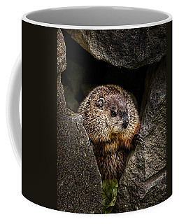 The Groundhog Coffee Mug