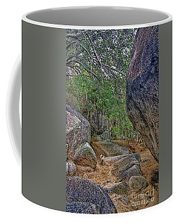 Coffee Mug featuring the photograph The Guide by Olga Hamilton