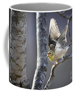 The High Notes Coffee Mug