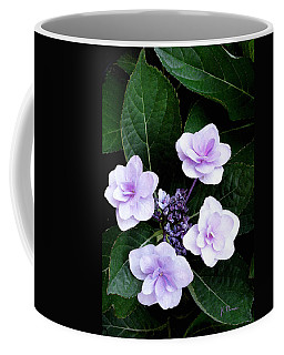 The Hydrangea  Coffee Mug
