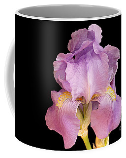 The Iris In All Her Glory Coffee Mug