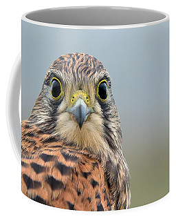 The Kestrel Face To Face Coffee Mug
