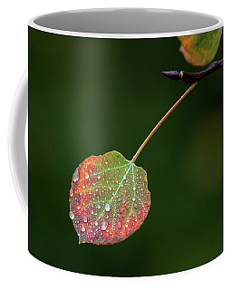 The Latter Rain  Coffee Mug