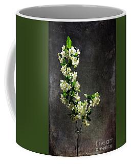 The Light Season Coffee Mug