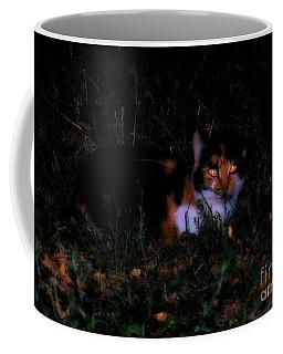 Coffee Mug featuring the photograph The Look by Marija Djedovic