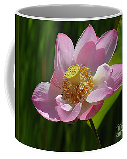 Coffee Mug featuring the photograph The Lotus by Vivian Christopher