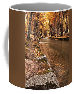 The Magic Of Fall Coffee Mug