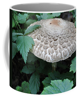 The Mushroom Coffee Mug