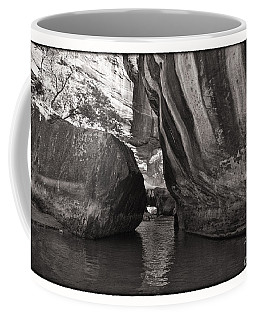 Coffee Mug featuring the photograph The Narrows II by Angelique Olin