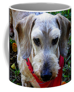 The Old Man Coffee Mug by Judy Wanamaker