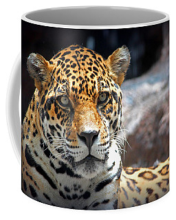 The Ole Leopard Don't Change His Spots Coffee Mug by Lynn Sprowl