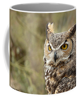 Coffee Mug featuring the photograph The Owl by Lucinda Walter