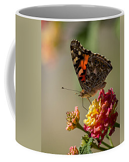 The Painted Lady Coffee Mug