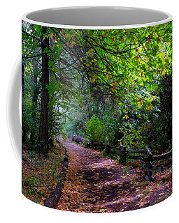 The Path Coffee Mug