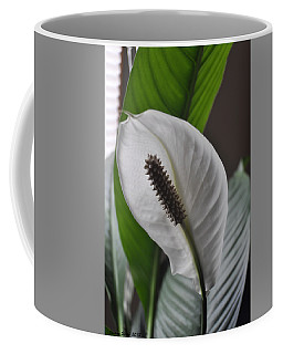 Coffee Mug featuring the photograph The Peace Lily by Verana Stark