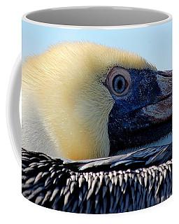The Pelican Coffee Mug
