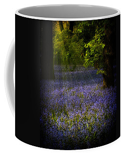 Coffee Mug featuring the photograph The Pixie's Bluebell Patch by Chris Lord