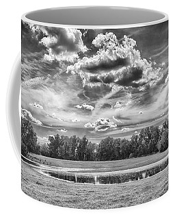 Coffee Mug featuring the photograph The Pond by Howard Salmon