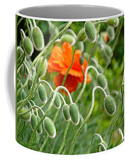 The Poppy Coffee Mug by Evelyn Tambour