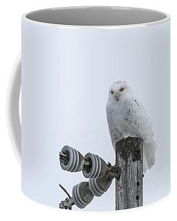 The Power Of The Owl Coffee Mug