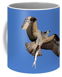The Provider Coffee Mug