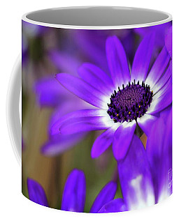 The Purple Daisy Coffee Mug
