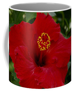 Red Hibiscus Coffee Mug by James C Thomas
