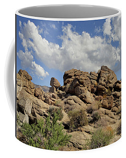 Coffee Mug featuring the photograph The Rock Garden by Michael Pickett