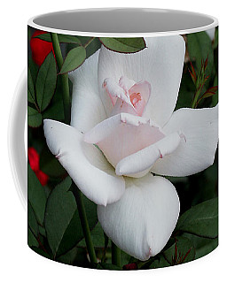 The Rose Coffee Mug by James C Thomas