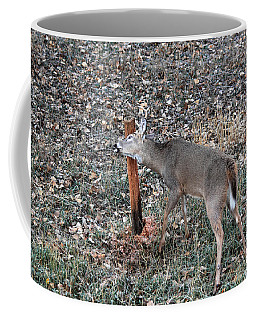 The Rut Coffee Mug