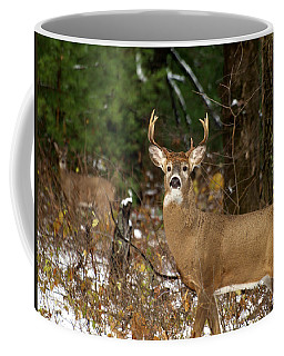 The Rutting Whitetail Buck Coffee Mug