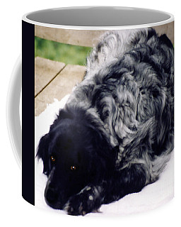 The Shaggy Dog Named Shaddy Coffee Mug by Marian Cates