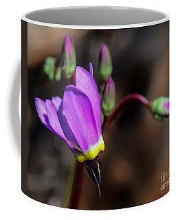 The Shooting Star Wildflower Coffee Mug