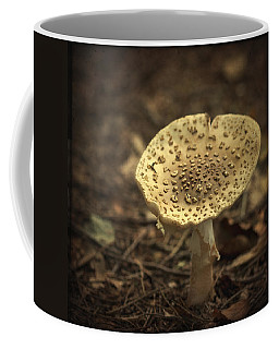 The Slow Passing Of Autumn Coffee Mug