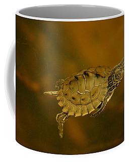 The Southeastern Map Turtle Coffee Mug