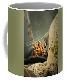 The Spectacular Spider I Coffee Mug