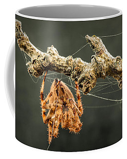 The Spectacular Spider II Coffee Mug