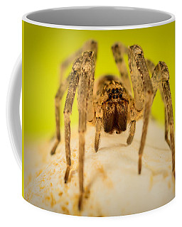 The Spider Series V Coffee Mug