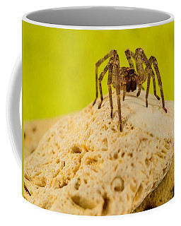 The Spider Series Vi Coffee Mug