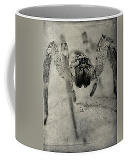 The Spider Series Xii Coffee Mug