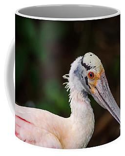 The Spoon Bird Coffee Mug